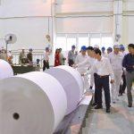 Sản xuất bao bì giấy - Bao Bì Giấy Hoàng Vương