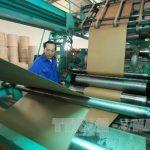 Yếu tố nào sẽ giúp doanh nghiệp sản xuất bao bì giấy tăng trưởng?